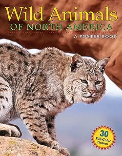 Wild Animals of North America (Poster Books)