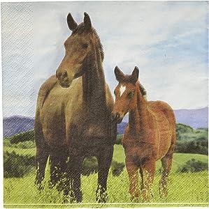 Wild Horse Napkins, 16 ct