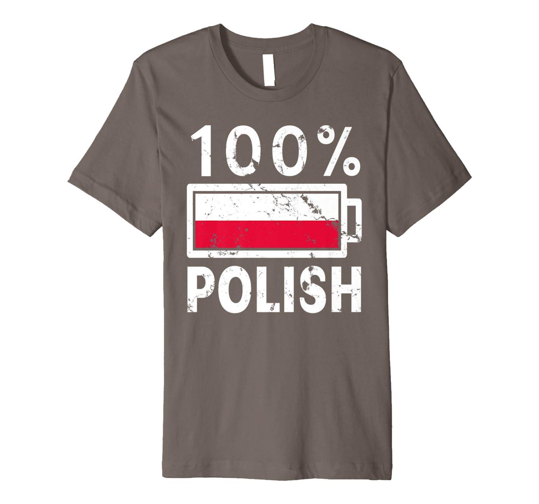 Poland Flag T Shirt 100 Polish Battery Power Tee