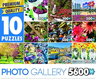 TCG Toys 80790-13 Sure-Lox Photo Gallery Series 13 10 Assorted Jigsaw Puzzle, 0.1 x 27 x 19, Multicolor (Pack of 10)