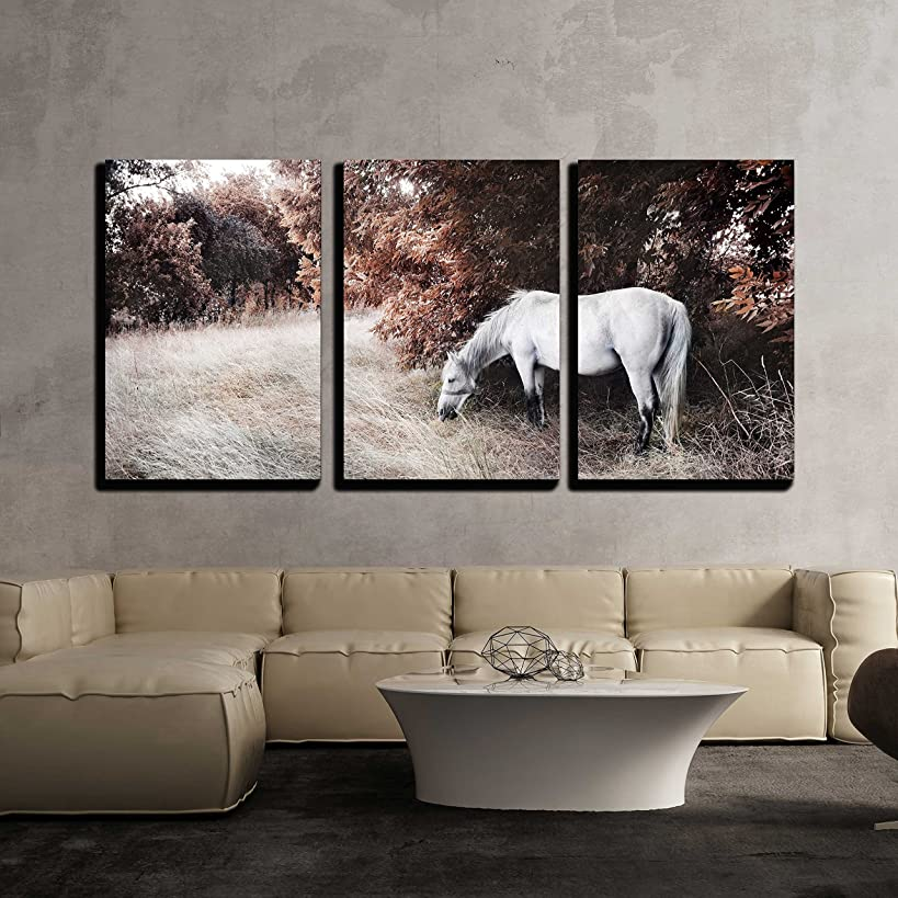 wall26 - 3 Piece Canvas Wall Art - White Horse - Modern Home Decor Stretched and Framed Ready to Hang - 24