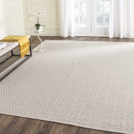 Safavieh Montauk Collection Mtk716g Handmade Cotton Area Rug 8 X 10 Ivory Beige Furniture Decor
