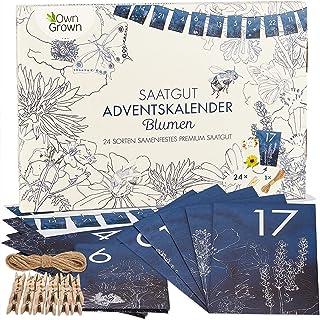 Saatgut Adventskalender 2021: Nachhaltiger Blumen Samen Adventskalender 2021 – Adventskalender Garten – Garten Adventskale...