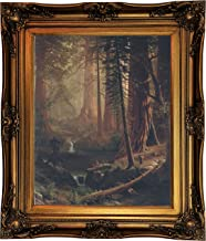 Historic Art Gallery Giant Redwood Trees of California 1874 by Albert Bierstadt Framed Canvas Print, Size 16x20, Gold