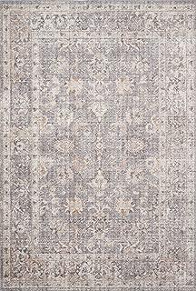 Loloi II SKY-01 Skye Collection Printed Distressed Vintage Area Rug, 5'-0