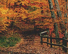 Nature's Finest No. 17 Cross Stitch Pattern Beautiful Fall Leaves in the Forest Cross Stitch Pattern only (Not a kit)