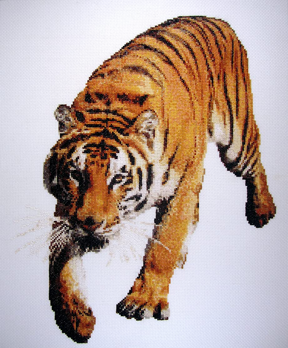 Tiger Run (aida background) Counted Cross Stitch Kit by Orcraphics