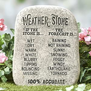 Giftcraft Ltd. Weather Stone Forecast Sign - Weather Rock– Funny Outdoor Garden Décor