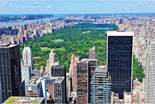 Poster – New York City Central Park – Picture Decoration America Metropolis East River Park Recreation Green Lung Nature I...