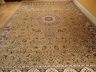 Best silk area rug Reviews