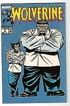 Wolverine #8 / Gray Hulk