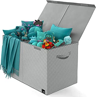 Toy Chest - 2 Bin Collapsible Storage Organizer with Lid for Kids Playroom | Box Stores Stuffed Animals, Linen, Groceries and More | The Oxford Collection, Gray Zag