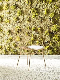 Elle Decor Elle Décor Holly Dining Chair Set, Gold
