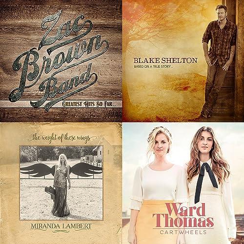 50 Great Modern Country Songs By Brandi Carlile