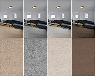 Custom Cut to Fit Area Rugs and Colors. Soft, Cozy, and Prefect for Homes, Apartments or Dorm Rooms. (8' x 10', Cream)
