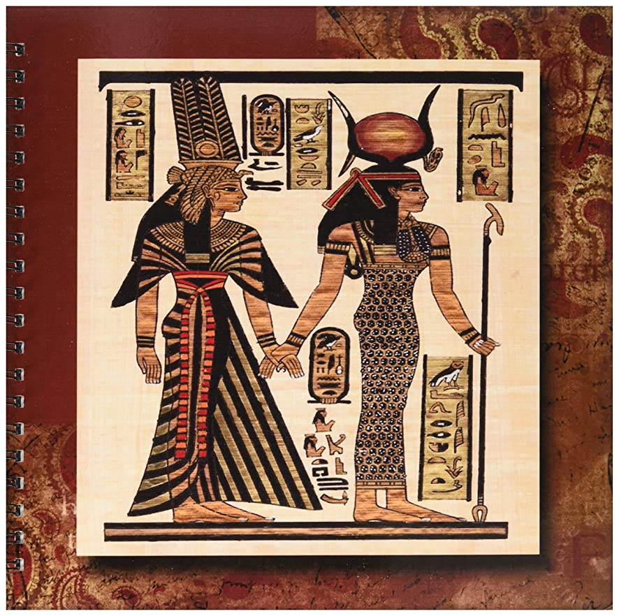 3dRose Susan Brown Designs General Themes - Ancient Egyptian Papyrus - Memory Book 12 x 12 inch (db_99429_2)