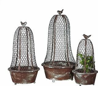Best wire cloche planters Reviews