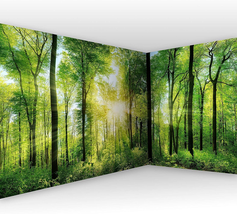 Murando - Eckfototapete selbstklebend Wald 539x250 cm decor Tapeten Wandtapete klebend Klebefolie Dekofolie Tapetenfolie - Landschaft Natur grün Baum c-A-0058-a-b