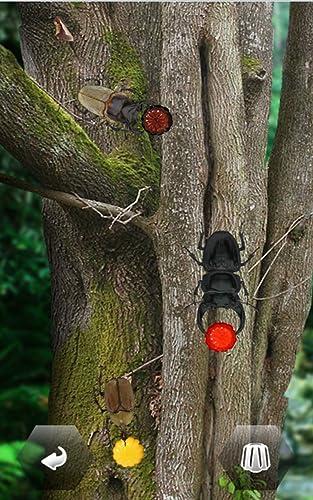『世界の昆虫採集』の2枚目の画像