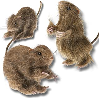 Prextex Realistic Mini Hairy Rats for Best Halloween Decoration