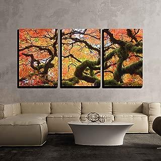 japanese maple tree art