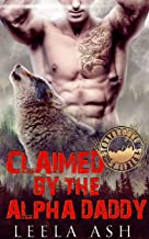 Claimed by the Alpha Daddy (Stonybrooke Shifters)