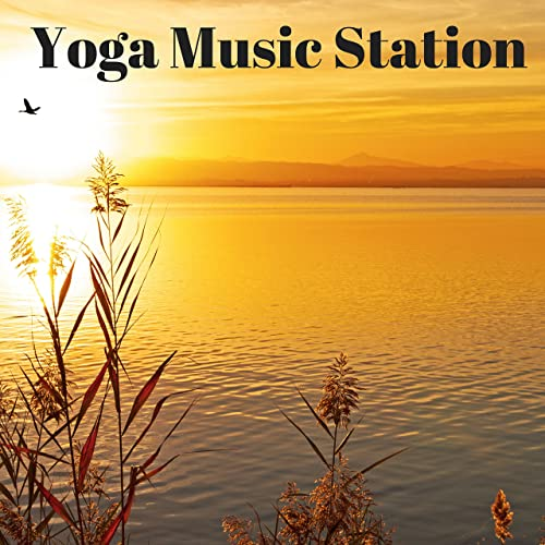Yoga Music Station: Relaxing Sleep Music Online by Meditation Prime