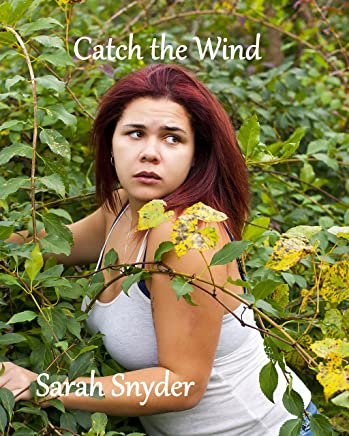 Catch the Wind (Through the Storm Trilogy Book 2) (English Edition)