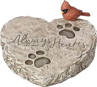Best dog garden stone Reviews