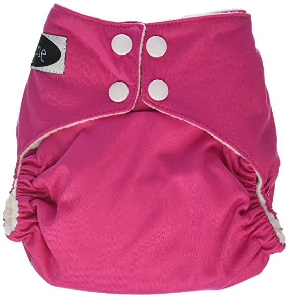 Imagine Baby Products Stay Dry All-in-One Snap Diaper, Palm Beach
