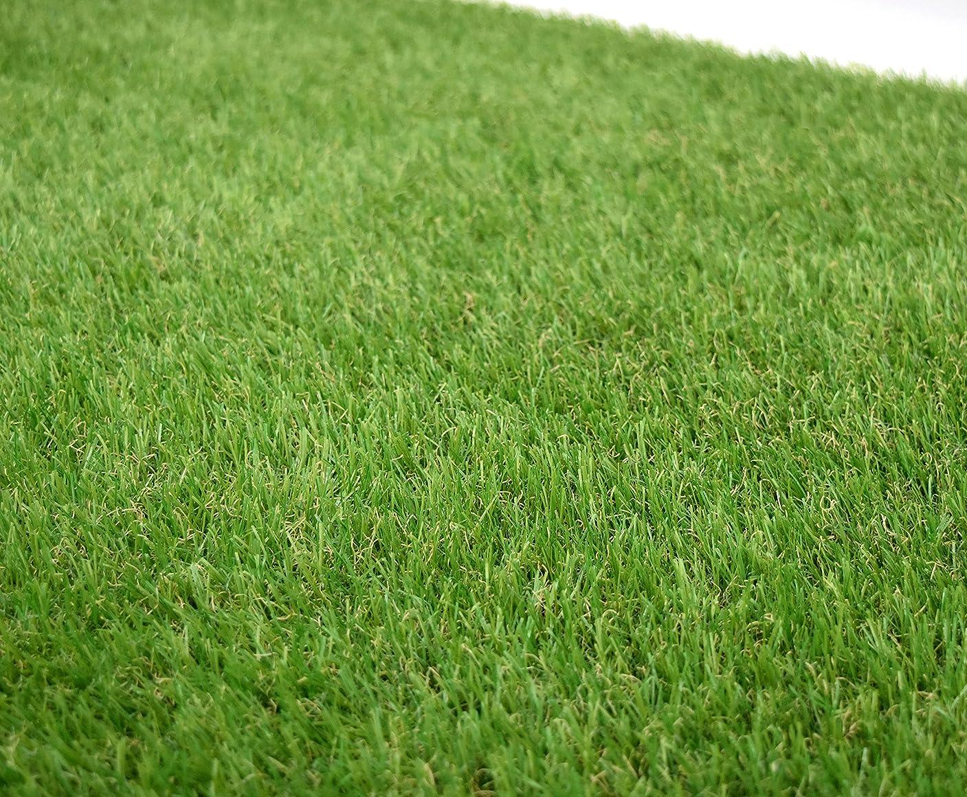 威信神経パウダー天然芝にそっくり!リアル人工芝(高麗芝)35mm 幅1m×長さ10m GTF-3510