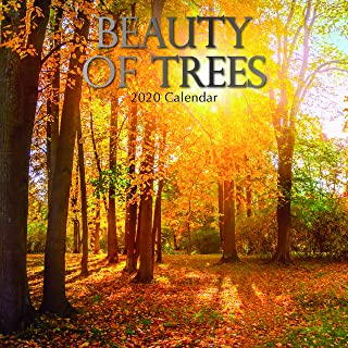 2020 Wall Calendar - Beauty of Trees Calendar, 12 x 12 Inch Monthly View, 16-Month, Beautiful Trees Theme, Includes 180 Reminder Stickers