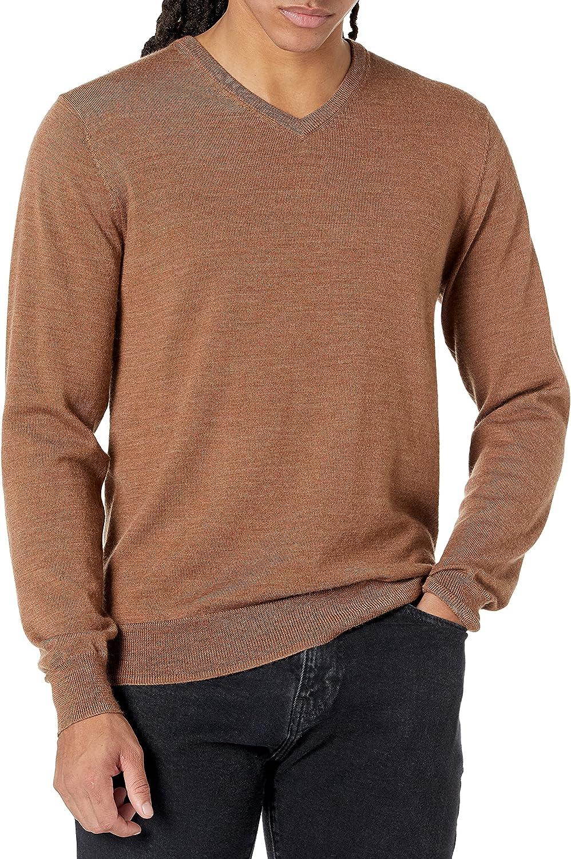 Amazon Brand - Goodthreads Men's Lightweight Merino Wool V-Neck Sweater