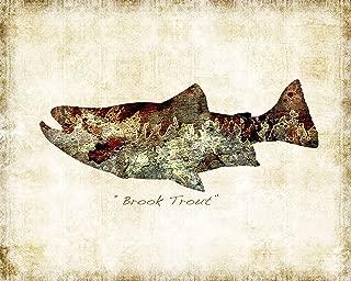 Brook Trout Freshwater Watercolor Art Print by Dan Morris