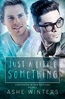 Just a Little Something (Captivated in New England Book 2)