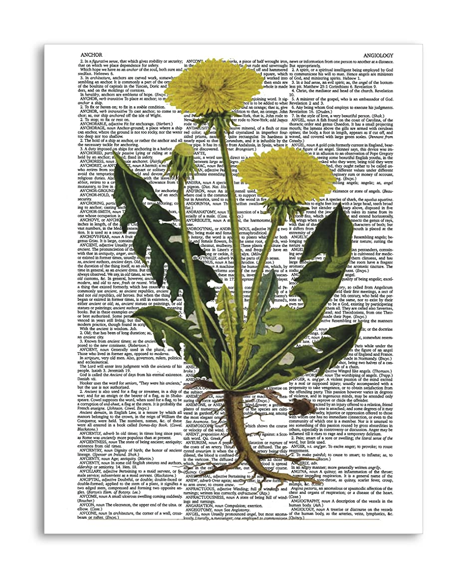 """Vintage Botany 9-8.5""""x11"""" Home Wall Decor Dictionary Art Print – Mixed Media Poster Printed on Semi-Translucent Paper"""
