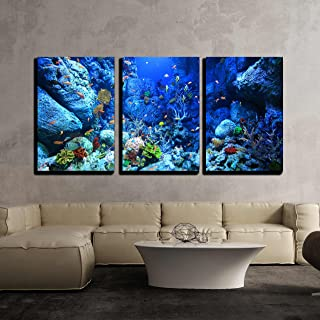 """wall26 - 3 Piece Canvas Wall Art - Underwater World - Modern Home Decor Stretched and Framed Ready to Hang - 16""""x24""""x3 Panels"""