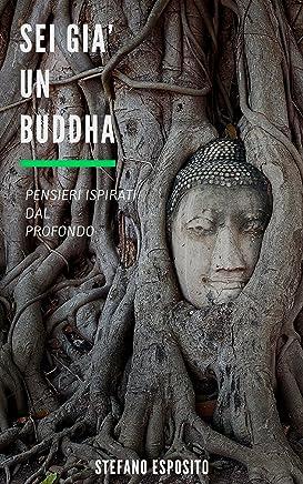 Sei già un Buddha: Pensieri ispirati dal profondo