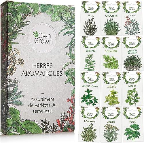 Kit de graines d'herbes aromatiques prêt à pousser OwnGrown, 12 épices et aromates à planter en un kit pratique, Kit ...