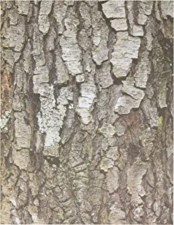 Best tree bark for crafts Reviews