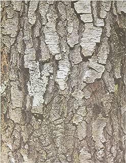 Best paper roll tree Reviews