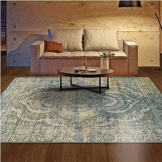 Superior Designer Salford Area Rug, 4' x 6', Blue-Beige