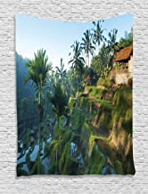 Ambesonne Balinese Tapestry, Terrace Rice Fields Palm Trees Traditional Farmhouse Morning Sunrise Bali Indonesia, Wall Hanging for Bedroom Living Room Dorm Decor, 40