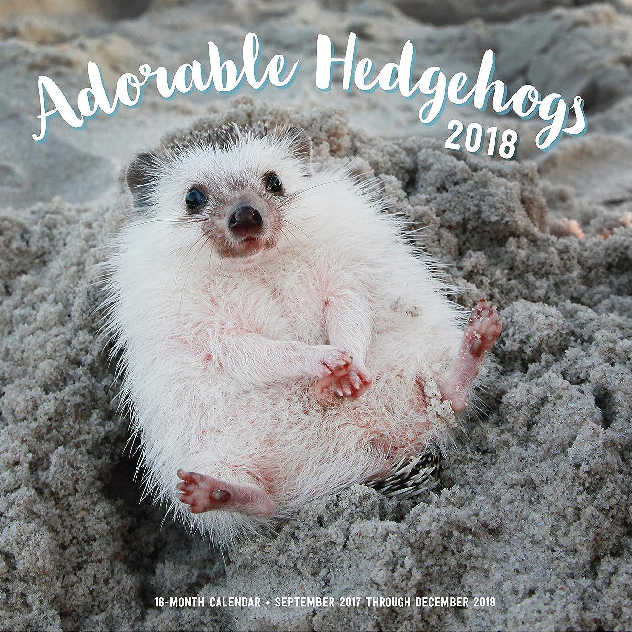 狂った侵入ライオンAdorable Hedgehogs Mini 2018: 16 Month Calendar Includes September 2017 Through December 2018 (Calendars 2018)