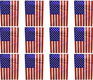 Set of 3 Patriotic 12 ft 8 Flag Banners! 9 Assorted Styles - 3 Different Designs - 12ft Long - Bunting - Perfect for Decorating for 4th of July, Parties, BBQ`s, and More! (Iridescent Flag)