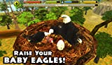 Immagine 2 eagle simulator