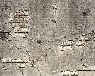 Wall Rogues WR50520 Broken Concrete Wall Mural