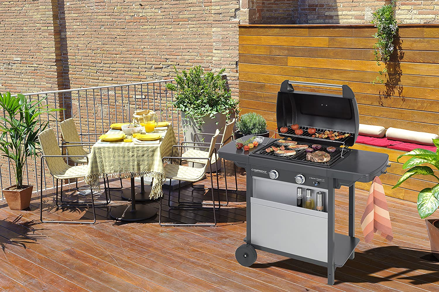 Freestanding Barbecues Gas Barbecues Printed Steel Grill and Grill ...