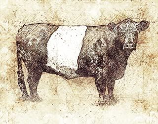 belted galloway prints