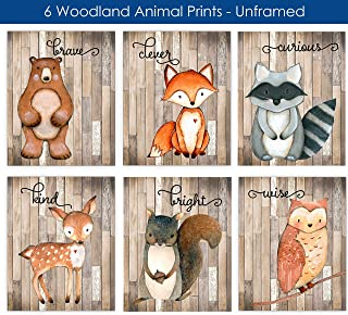 Woodland Nursery Decor for Boys - Animal Pictures Wall Art - Baby Room Animal Prints - Kids Bedroom - Bear Deer Fox Raccoon Owl Squirrel Decor - CHOOSE SIZE and MAT or PRINT ONLY - SET OF 6 UNFRAMED
